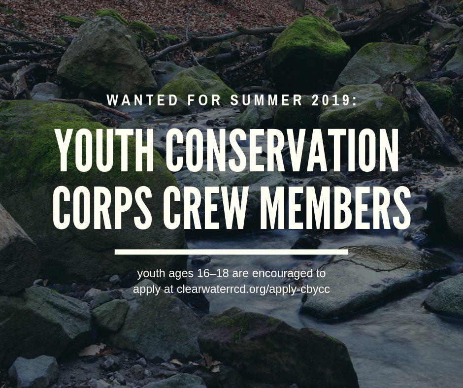 Job Opportunity: Clearwater Basin Youth Conservation Corps Crew Members (seasonal) (32 openings)