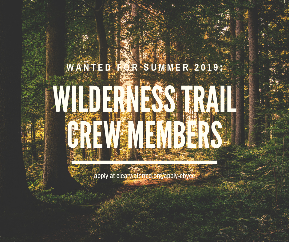Request for Qualifications: Clearwater Basin Youth Conservation Corps Wilderness Trail Crew Members (2 openings)
